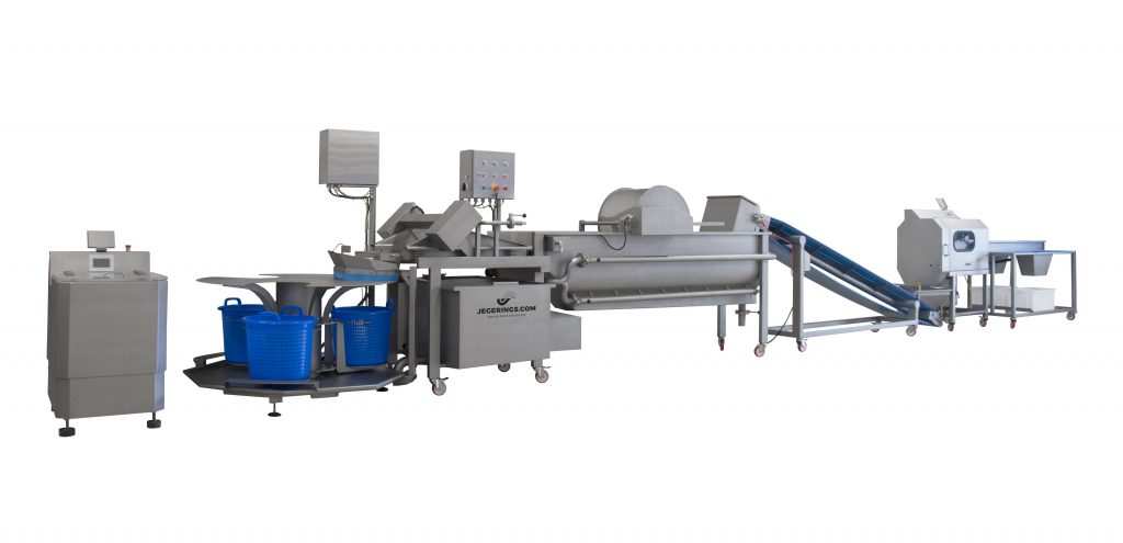 Vegetable processing line including the belt cutting machine BCM-2450